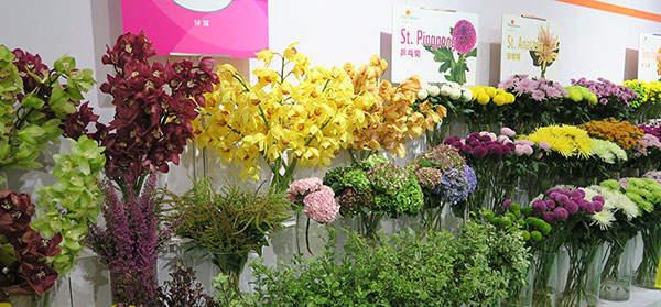 东大塑业应邀参加第19届中国国际花卉园艺展览会
