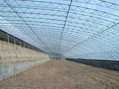 po膜和pe膜在大棚黄瓜种植上的对比试验