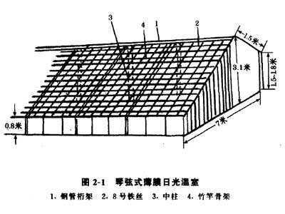 日光温室结构-琴弦式结构