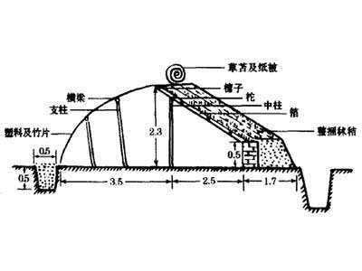 长后坡矮后墙拱圆形日光温室