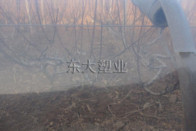 冠县客户-eva消雾膜