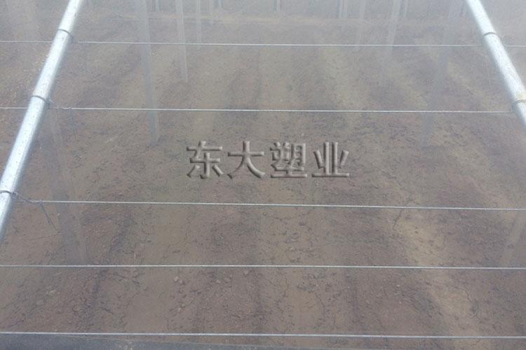 莘县客户-po膜