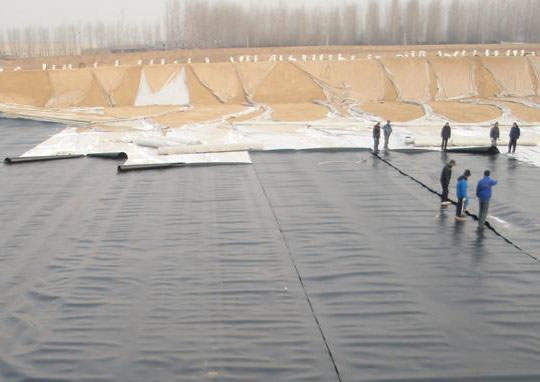 大棚黑白膜用于水产养殖